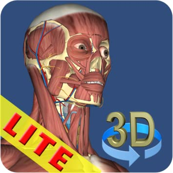 Amazon.com: 3D Anatomy Lite: Appstore for Android