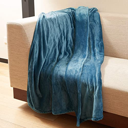 DAILYLIFE Electric Throw Cozy Heated Blanket UL Certified