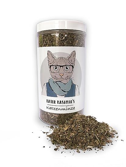 Hierba gatera (para Gatos/Catnip) Hace a su Gato Feliz. Paquete XXL