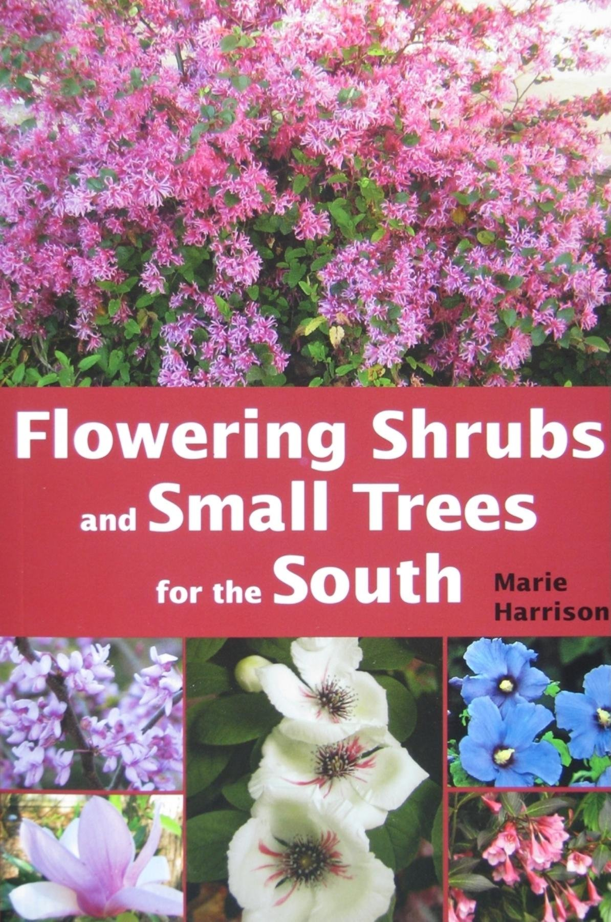 Flowering shrubs and small trees for the south marie harrison flowering shrubs and small trees for the south marie harrison 9781561644391 amazon books izmirmasajfo