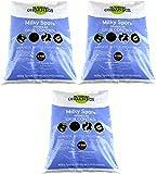 Gabriel Organics Milky Spore Lawn Spreader Mix