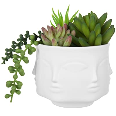 MyGift 4-Inch White Ceramic Guanyin Multi-Face Succulent Planter Vase: Garden & Outdoor