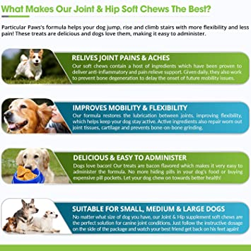 amazon com glucosamine for dogs treats joint hip formula with msm chondroitin and hyaluronic acid 65 soft chews pet supplies