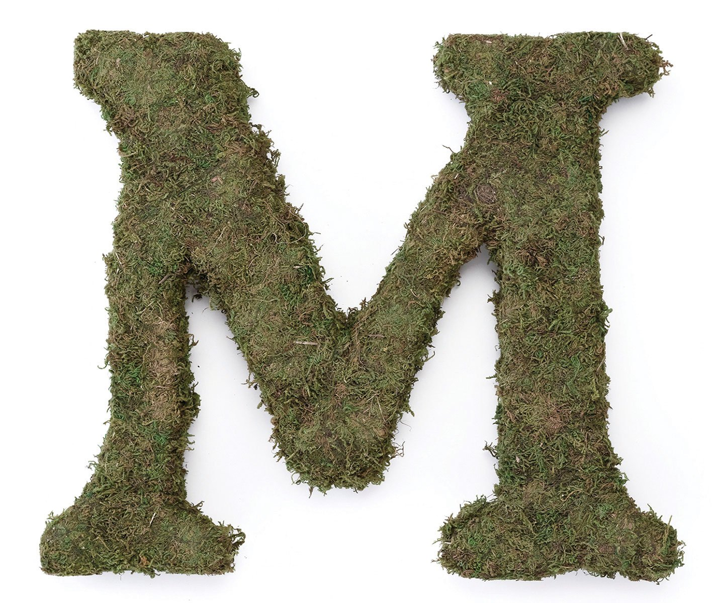 Lillian Rose Moss Letter for Home Decor, 15-Inch, Monogram M