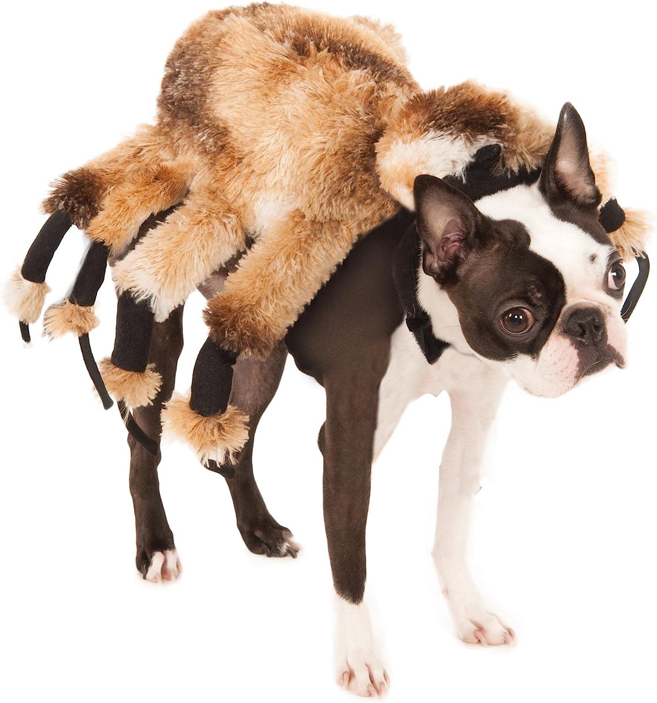RubieS - Disfraz de araña Gigante, para Mascotas, Perro, Producto ...