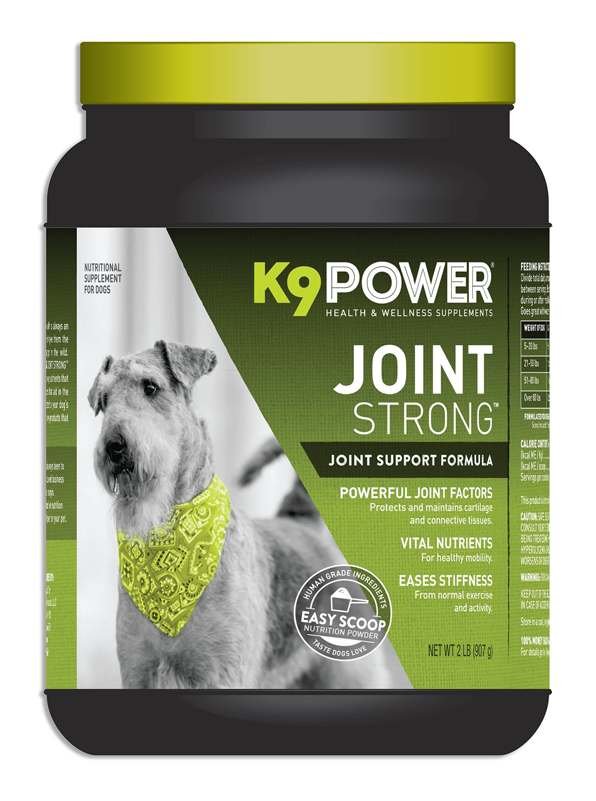 K9 Power Joint Strong - Joint Support Formula For Your Dog's Joint Health and Mobility - 2 Pound by K9-Power (Image #1)