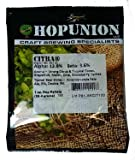 Hopunion US Hop Pellets for Home Brew Beer Making (US Citra)