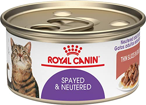 Royal Canin Spayed Neutered Thin Slices in Gravy Wet Cat Food, 3 oz. can Pack of 24