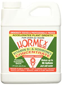 best-rooting-hormone-Hormex-HC1216