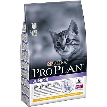 Purina ProPlan Junior pienso para Gato bebe, gatito con Pollo 4 x 3 Kg: Amazon.es: Productos para mascotas
