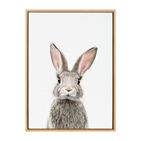 Kate and Laurel Sylvie Female Baby Bunny Rabbit Animal Print Portrait Framed Canvas Wall Art by Amy Peterson, 23×33 Natural