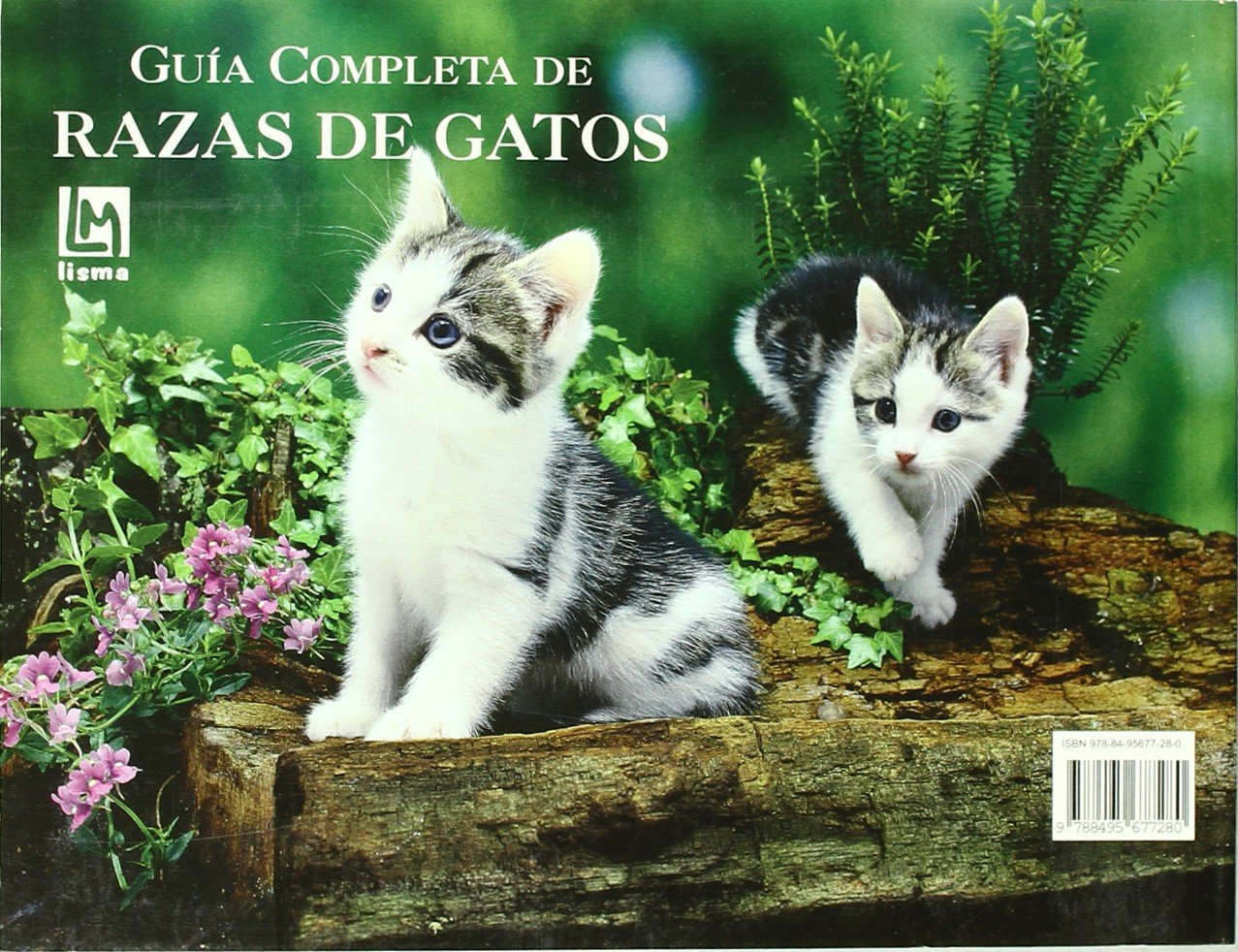Guia Completa De Razas De Gatos/ Complete Guide of Cat Breeds (Spanish Edition): Louisa Somerville: 9788495677280: Amazon.com: Books