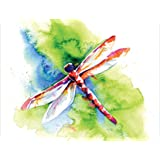 Blank Note Cards - Flying Colors Dragonfly - Boxed Set of 20 Premium Note Cards and Matching Envelopes