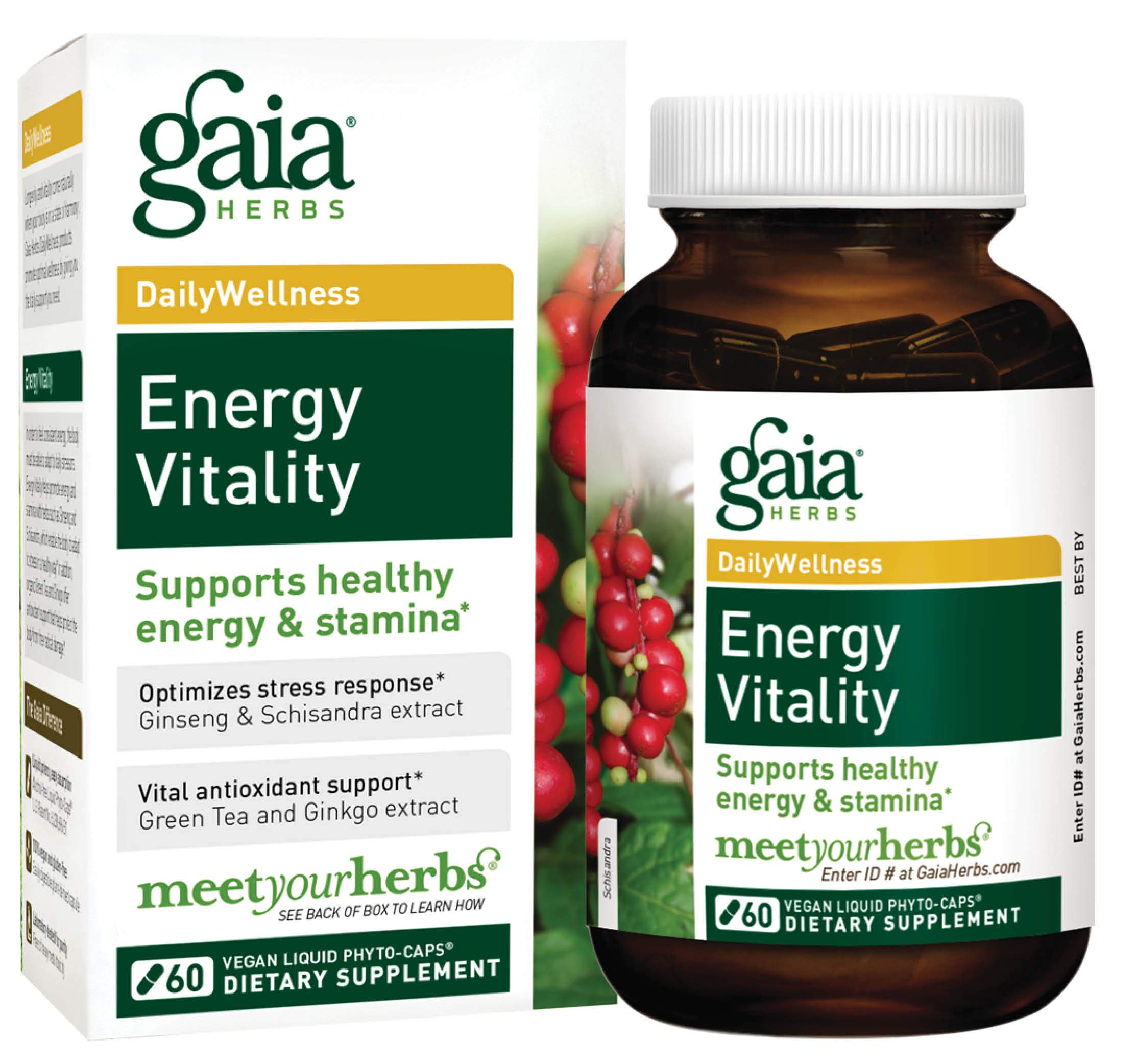 Gaia Herbs Energy Vitality, Vegan Liquid Capsules, 60 Count - Promotes Healthy Energy and Stamina, Healthy Stress Response, Green Tea Extract, Ginkgo Biloba, Panax Ginseng, Schisandra Berry