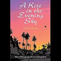 Kite in An Evening Sky
