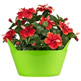 Sharpex Idel Jenny 22 Series Cute Basket Type Stylish Indoor Flower Pot For Office & Home Use (Lime Green, Regular)