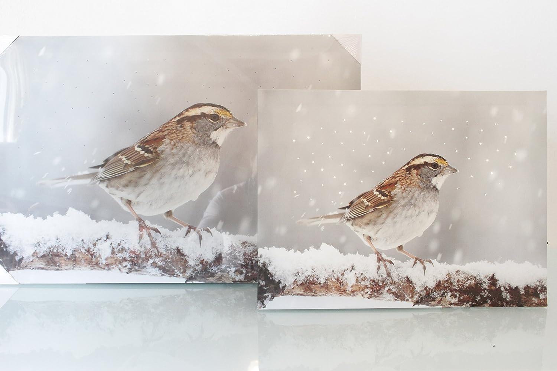 Fibre optic Led light up Bird Christmas scene on canvas 30x40cm - New for 2015 Kaemingk
