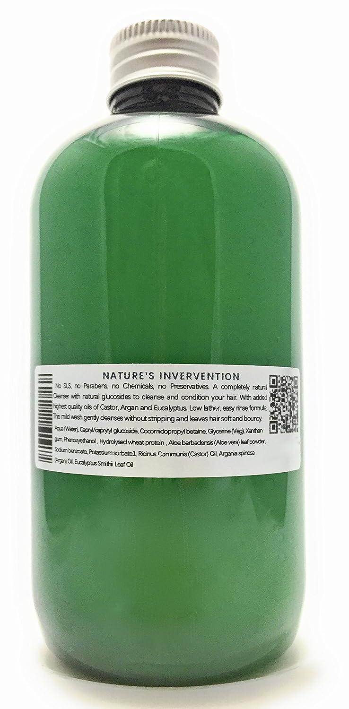 CHAMPÚ 100% NATURAL con ACEITE DE RICINO, ACEITE DE ARGAN Y EUCALIPTO - 250 ml - por NATURES INTERVENTION - sin SLS, sin parabenos, sin productos químicos, ...