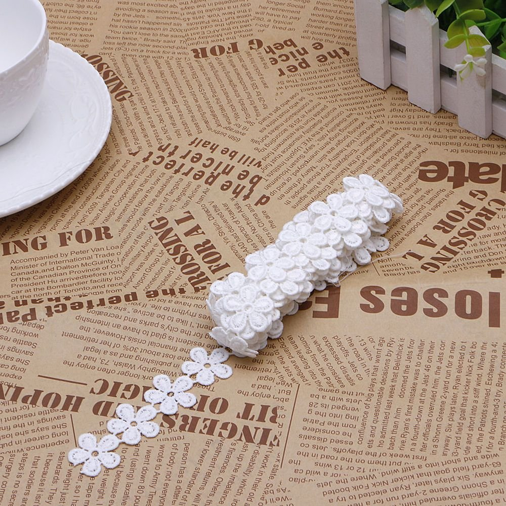 White EORTA 6 Yard X 2 CM Floral Lace Trim Edge Daisy Flower Shaped Embroidered Applique Water Soluble Lace Ribbon for Headband Shoes Dress Apparel Design Sewing Accessories Craft Scrapbooking