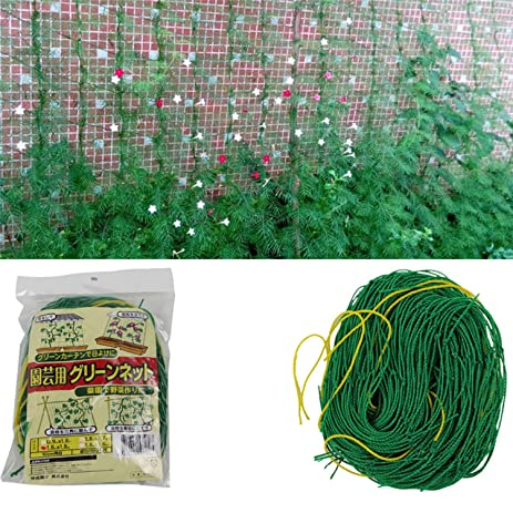 Amazon.com : Anti-bird Net Garden Plant Protect For Plants Fruits ...