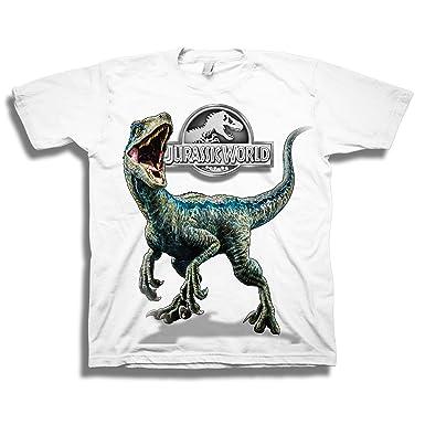 e934d6da Amazon.com: Jurassic World Boys 2 Blue Raptor Short Sleeve T-Shirt: Clothing