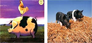 Pig & Rooster Farm Animal Picture Two Set Wall Decor Art Print Poster (8x10)