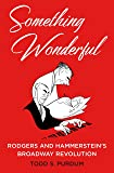 Something Wonderful: Rodgers and Hammerstein's Broadway Revolution