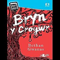 Bryn y Crogwr (Welsh Edition)