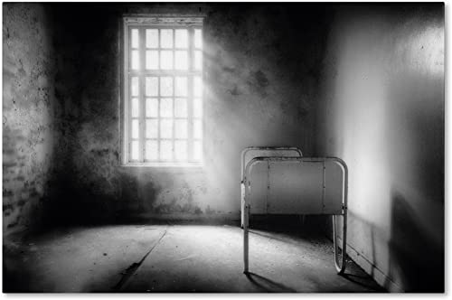 The Asylum Project-Empty Bed Artwork by Erik Brede, 12 by 19-Inch Canvas Wall Art