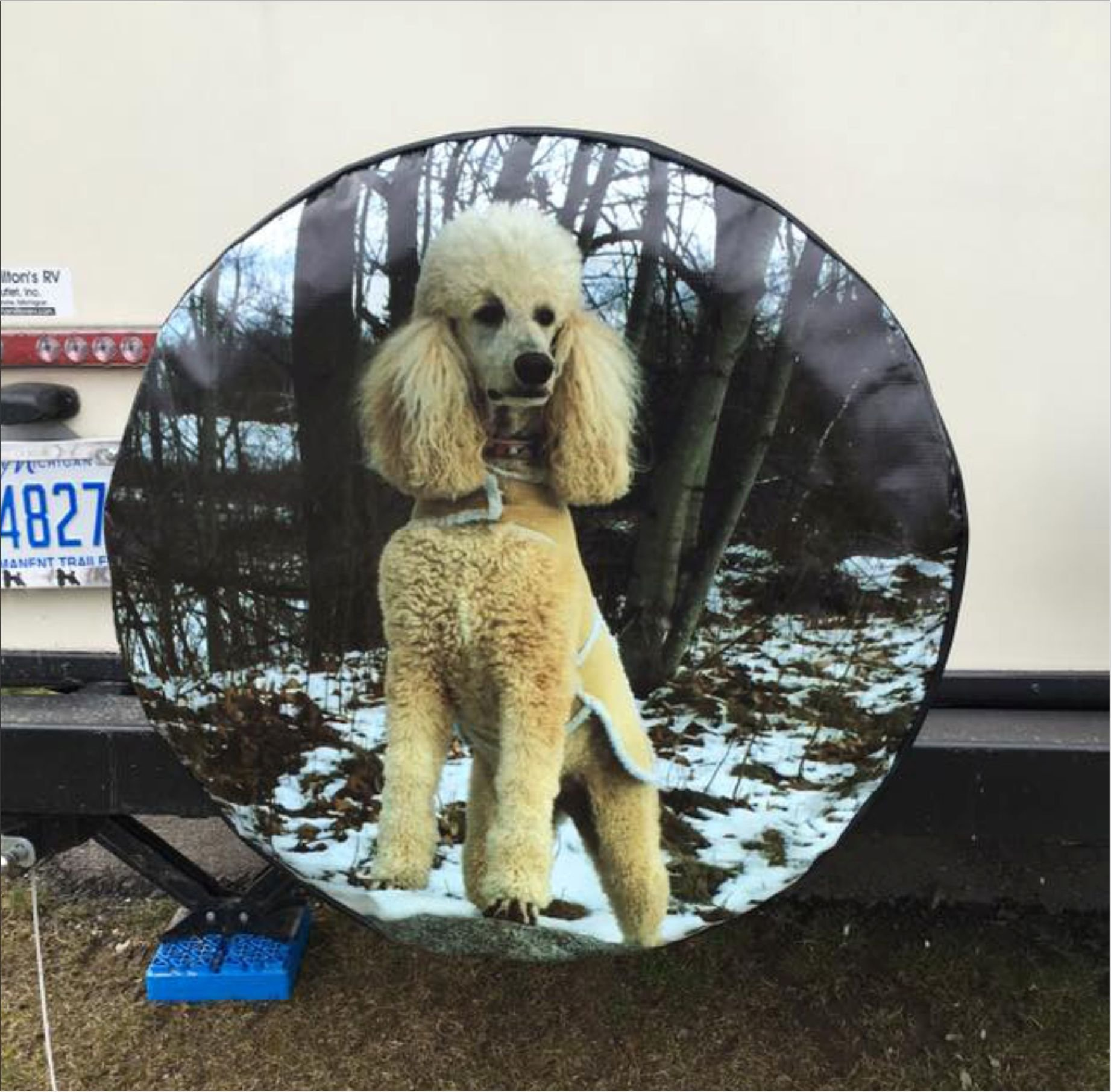 Custom Spare Tire Cover for Jeep RV Camper VW Trailer etc(Select popular sizes from drop down menu or contact us-ALL SIZES AVAILABLE)Tire Cover Central by Tire Cover Central (Image #7)