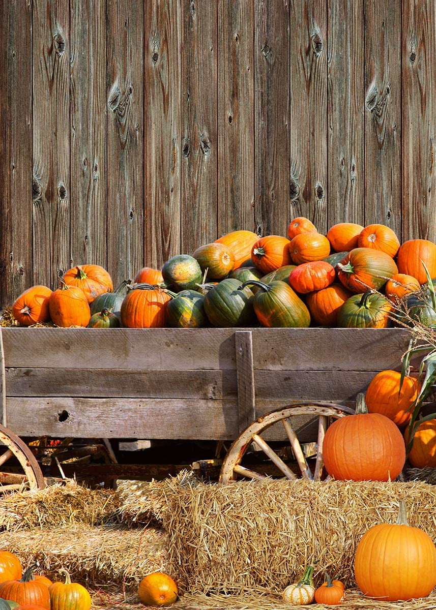 LB 10x8ft Fall Thanksgiving Backdrop for Photography Rustic Autumn Wooden Plank Photography Backdrops Pumpkin and Hayrick Background for Kids Birthday Baby Shower Party Photo Booth Studio Props
