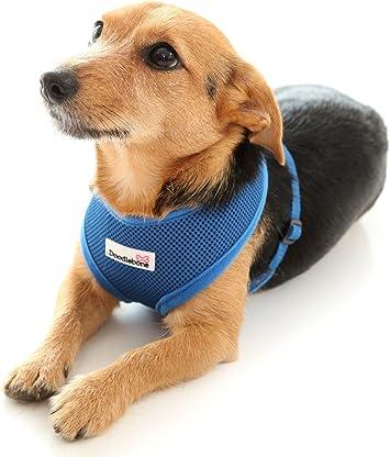 Doodlebone Airmesh Dog Harness Padded Soft Breathable