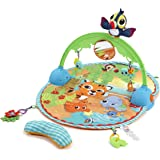 Little Tikes Baby - Good Vibrations Deluxe Activity Gym - with Bag