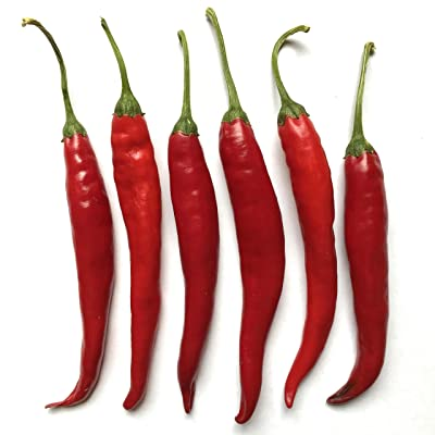 Wayland Chiles Puya or Pulla Chile, 20 Seeds : Garden & Outdoor