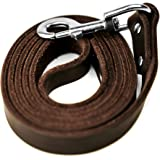 Mighty Paw Leather Dog Leash | 5 ft Leash Super Soft Distressed Real Genuine Leather- Premium Quality, Modern Stylish Lead. P