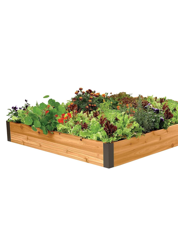 Cedro 4 x 8 recaudado jardín cama con 4 Esquinas de aluminio ...