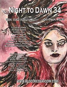 Night to Dawn 34
