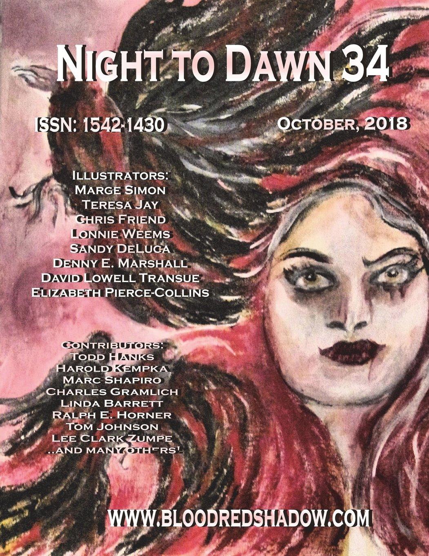 Night to Dawn 34 ebook