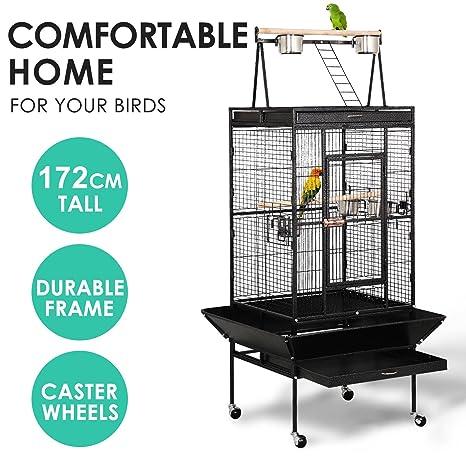 aa402a09f151 Amazon.com : Heize best price Bird House 68