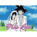 Amazon.com: DBZ Dragon Ball Z Son Goku Gokou & ChiChi Wedding Cake ...