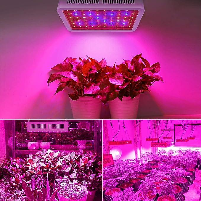 Plante De Led 300w Lampe Parfait Croissance Culture roleadro Plantes Intérieur Fleurs Horticole Et Floraison Pour Indoor 29WIEDH