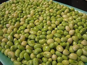 Lady Cream pea AKA: Lady Finger Pea, Rice Pea, Catjang Pea Southern Peas(1/4 lb Seeds)