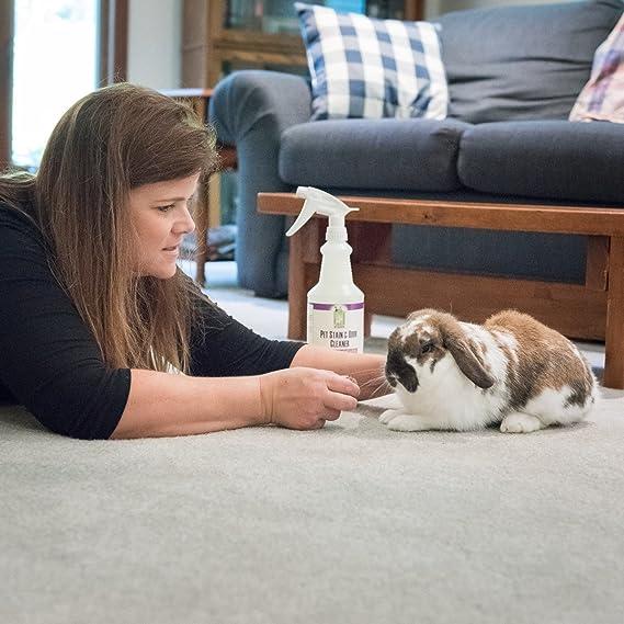 Pet orina eliminador de manchas y olor limpiador en spray quitamanchas 32 oz, diseño de gato y perro y enzimática enzima orina - profesional fuerza ...
