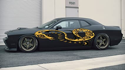 Amazon Com Snake Colored Side Vinyl Snake Car Graphics Snake Car