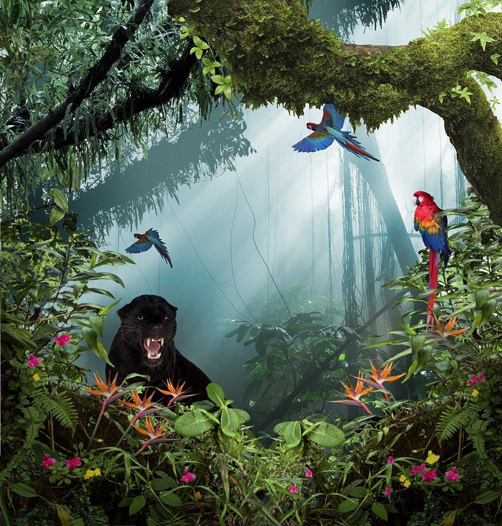 写真バックドロップ – In the Jungle withパンサー – 10 x 10 ft。 – 高品質シームレスなファブリック   B00OJEVERQ