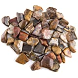 """Crystal Allies Materials: 1lb Bulk Tumbled Petrified Wood Fossils from South Africa - Large 1"""" Polished Natural Crystals for Reiki Crystal Healing"""
