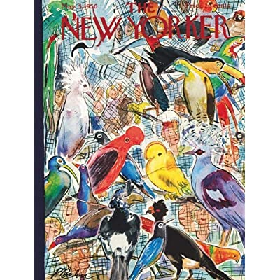 PTWJ New Yorker Bird Cage - 1000 Piece Jigsaw Puzzle: Toys & Games