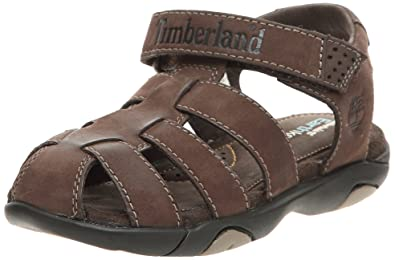 timberland oyster