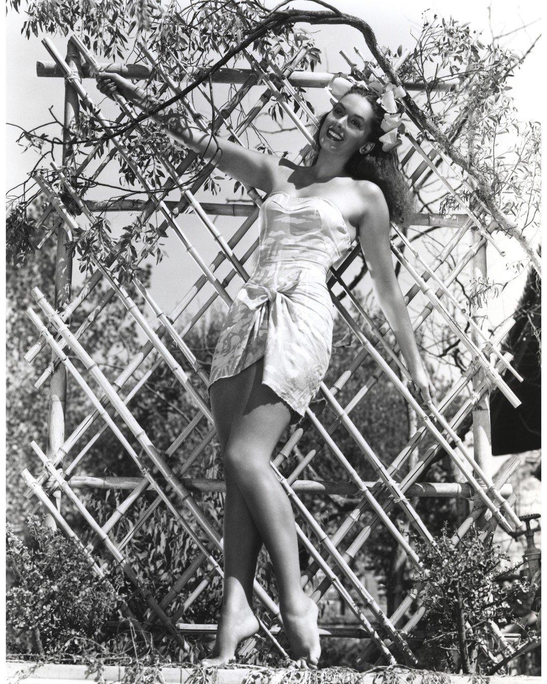 Susan Ward,Doris Dowling Adult pictures Timothy Spall (born 1957),Veronica Hamel