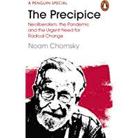 The Precipice: Neoliberalism, the Pandemic and the Urgent Need for Radical Change (English Edition)